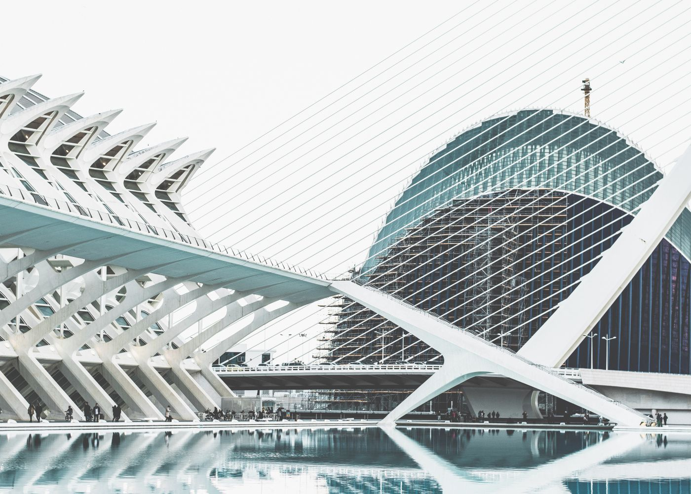 The City of Arts and Science  - Valencia